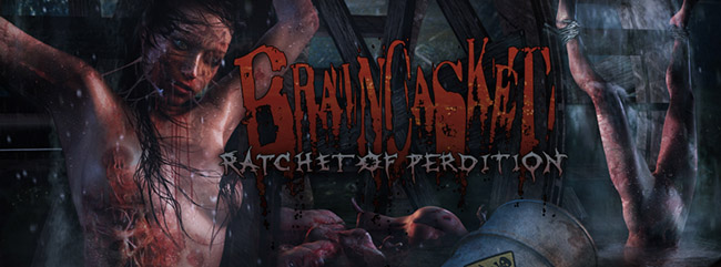 braincasket_fb_header_4